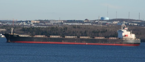 "Panamax Bulker MV ""CAROL"" (Image source: Halifax Shipping News)"
